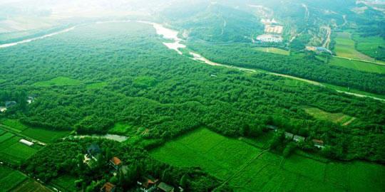 中南百草原
