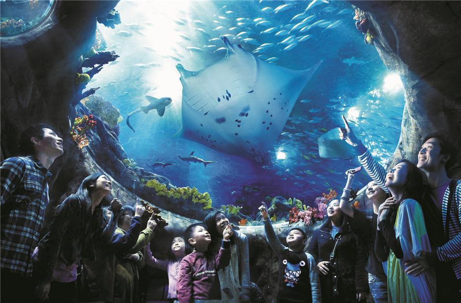 香港海洋公園夢幻水都