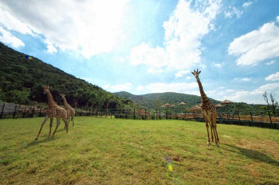 无锡动物园·太湖欢乐园动物园区