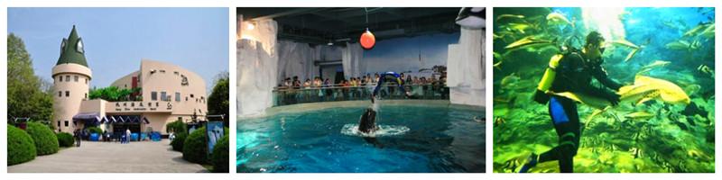 杭州海底世界杭州海底世界