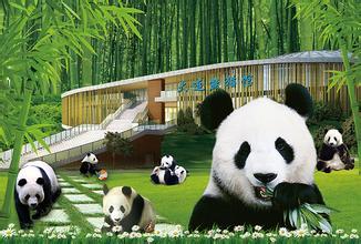 大连森林动物园大连森林动物园