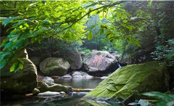 安吉浙北大峡谷、大竹海、藏龙百瀑2日巴士游宿品质酒店