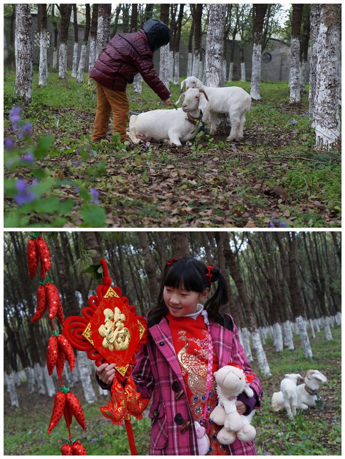 """四季强丰,百""""画""""长廊——寻找上海最美的春天亲子活动招募啦!我是最美小画家"""
