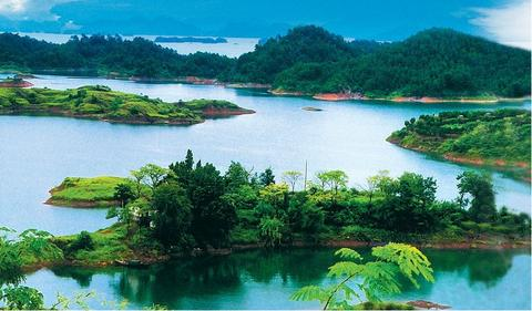 上海至千岛湖巴士