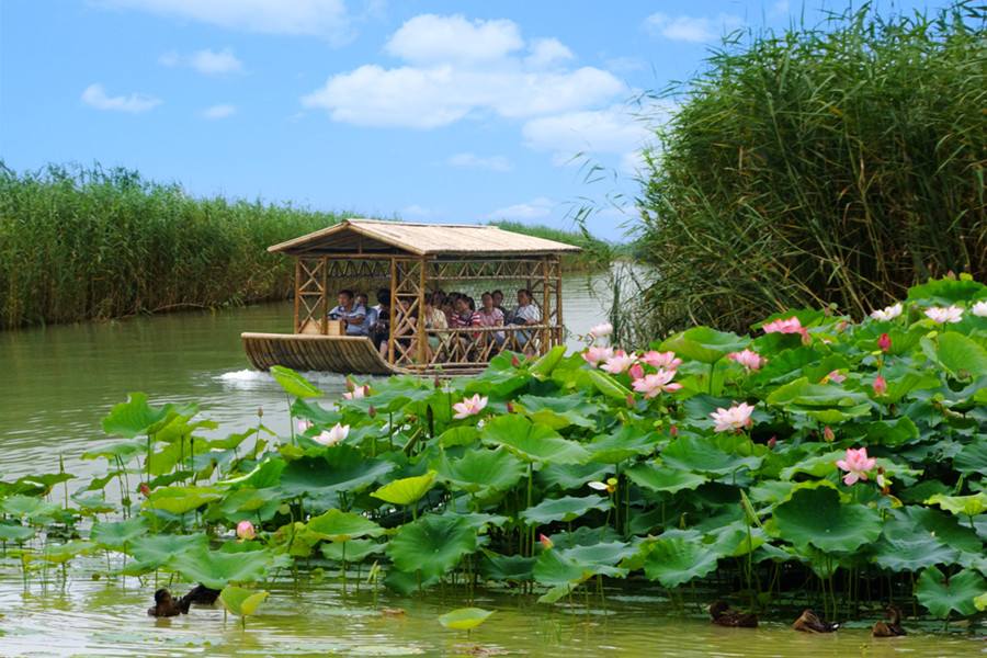 泗洪洪泽湖湿地景区