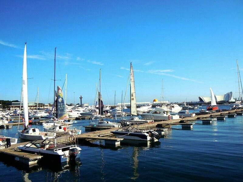 青岛、烟台、威海、大连、旅顺巴士5日当地游[无购物无加点] 顿顿美食 一次出行游跨两省 打卡魅力西海岸  赠摩天轮