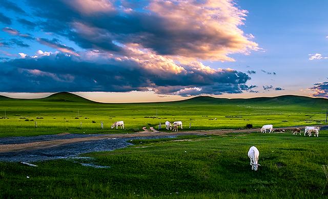 木兰围场乌兰布统大草原2日巴士跟团游[草原、异域风情]纯玩无购物,让您感受纯粹旅游的体验