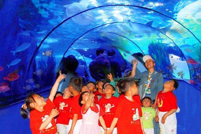 蓬莱海洋极地世界海底隧道