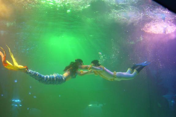 蓬莱海洋极地世界水下剧场