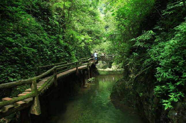 成都-青城山往返巴士1日半自助跟团游