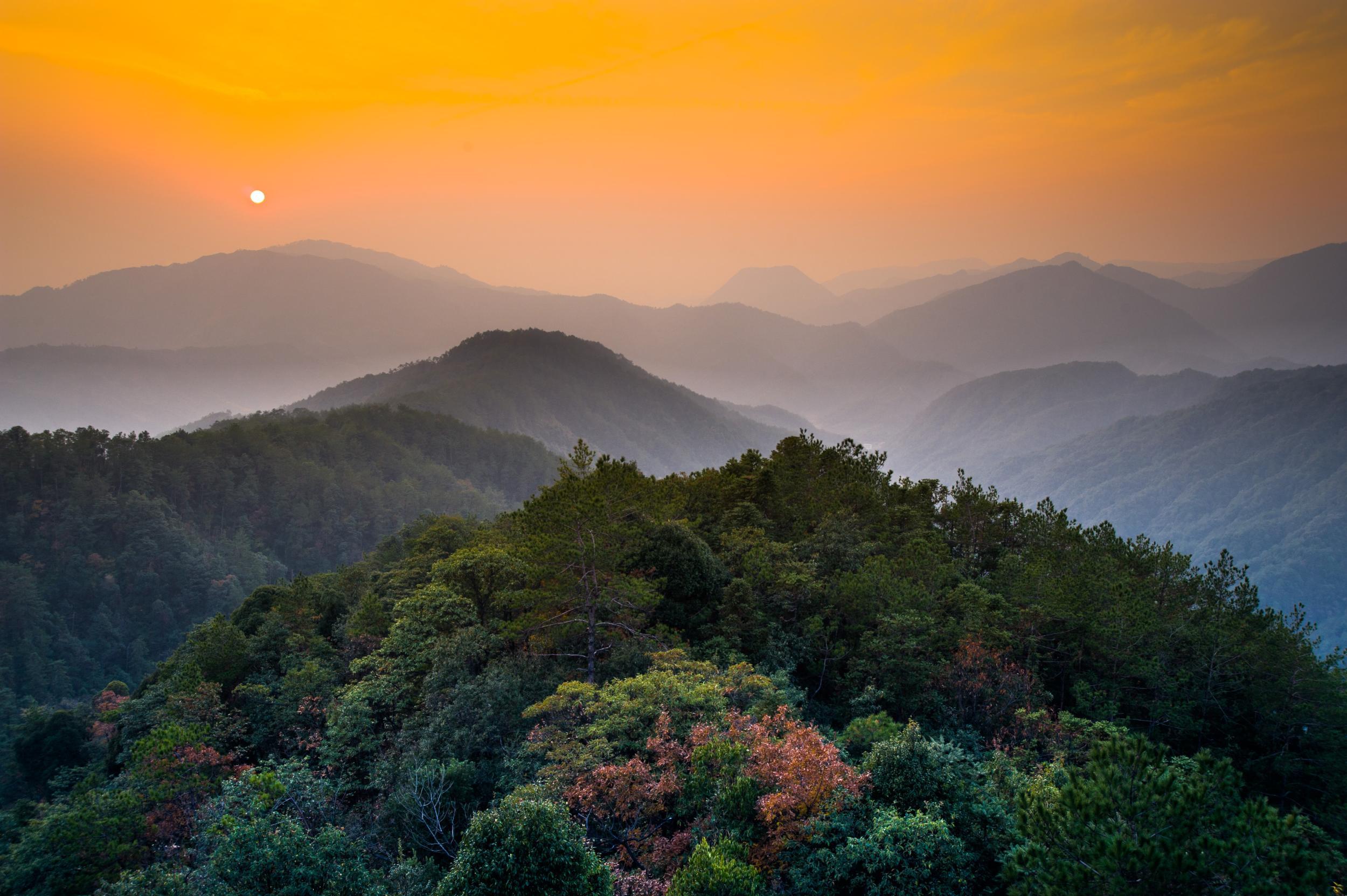 衢州古田山风景区