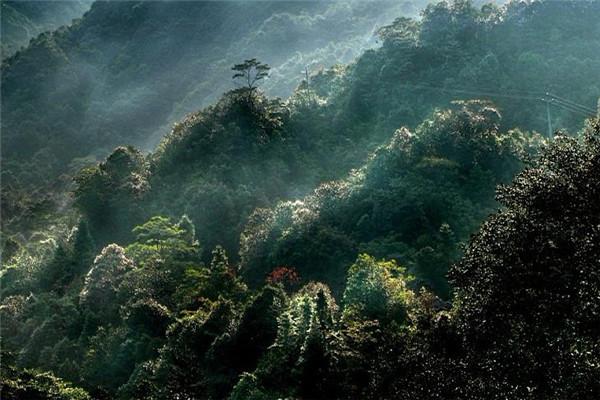 天井山森林公园