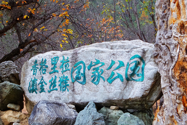 滇金丝猴国家公园