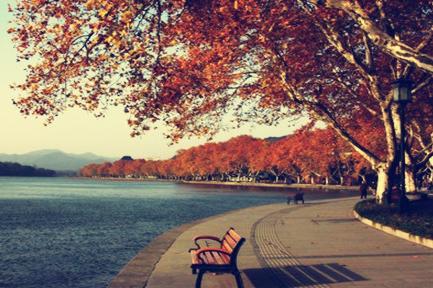 【魅力华东,湖光山影】杭州飞来峰,苏州狮子林纯玩巴士2日1晚跟团游