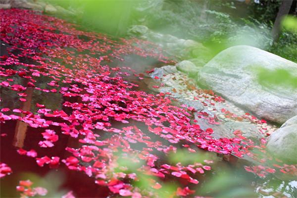 宜良汤池热水河温泉