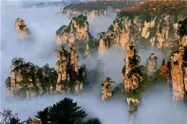 张家界核心景区武陵源(张家界国家森林公园)杨家界