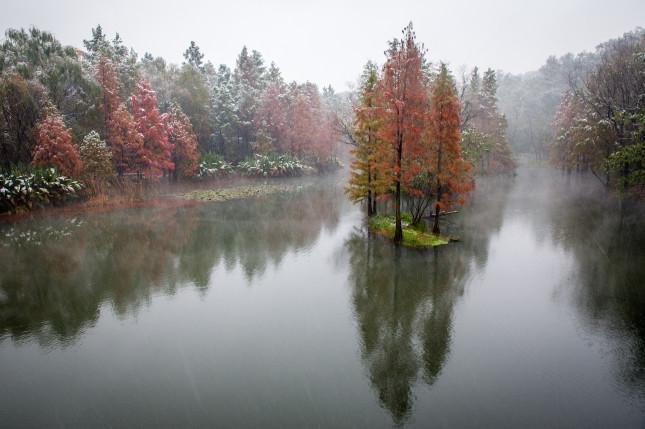 南京明孝陵风景区湿地公园