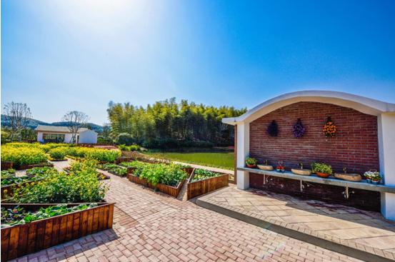 花谷奇緣廚房花園