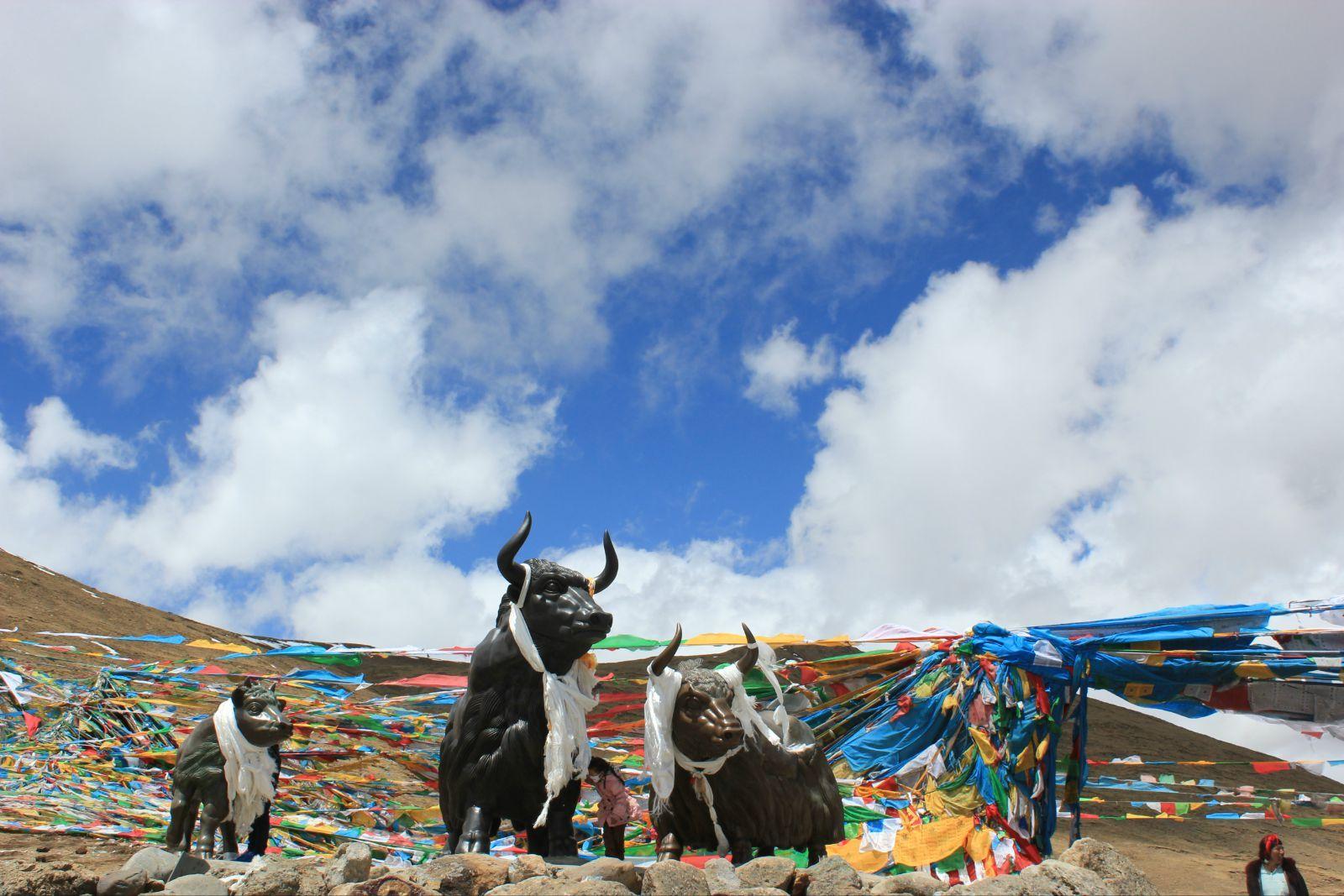 西藏拉萨、林芝、巴松错、羊湖9日卧飞跟团游[进藏首选]0自费、赠6大特色美食,1晚宿鲁朗国际小镇,深度体验藏地田园生活
