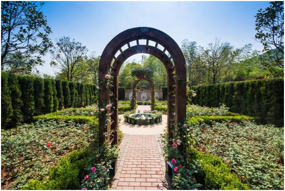 花谷奇緣玫瑰花園