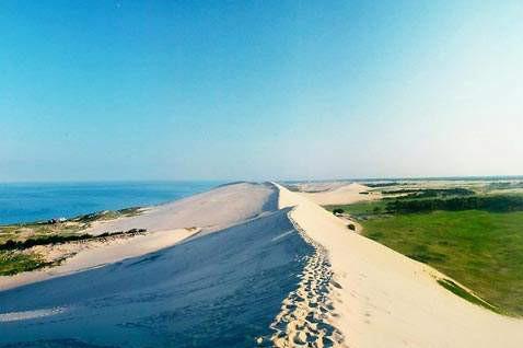 翡翠岛巴士2日游海边滑沙体验、动植物辨识、探索潮间带、户外厨艺大赛,观海听涛纵情纵黄金海岸!