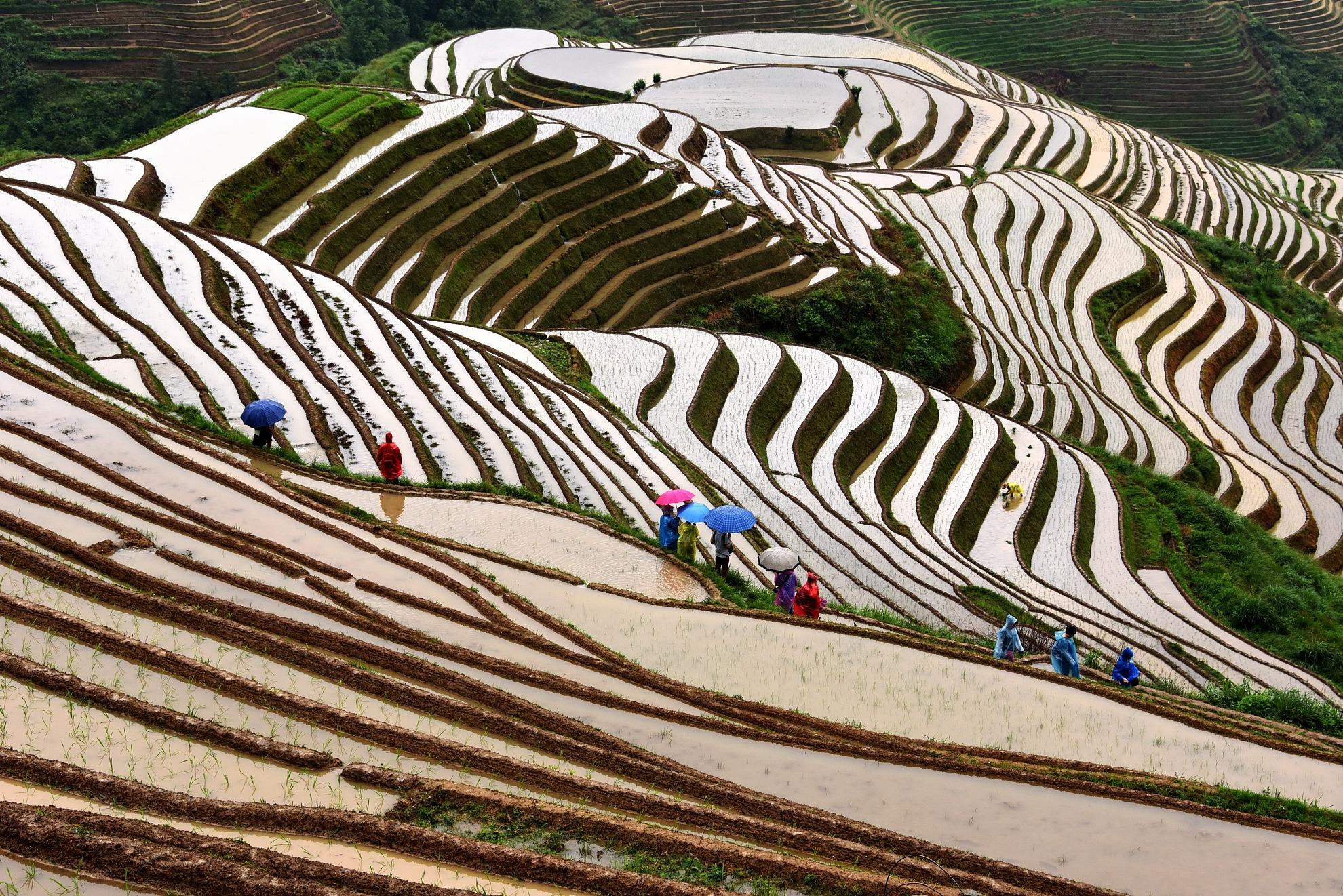 桂林、漓江、龙脊、古东、世外、阳朔巴士5日当地游攀爬古东瀑布 穿越世外桃源