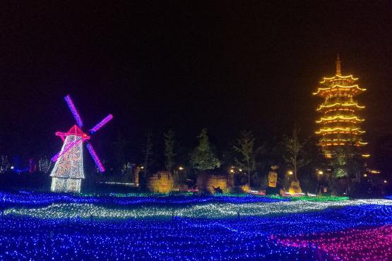 洋湖草雕灯光欢乐季