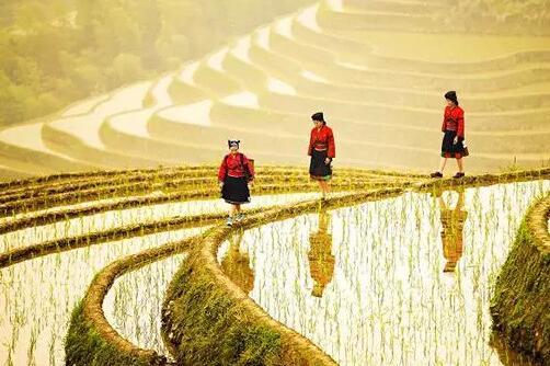 桂林、阳朔、漓江、龙脊动车4日3晚跟团游