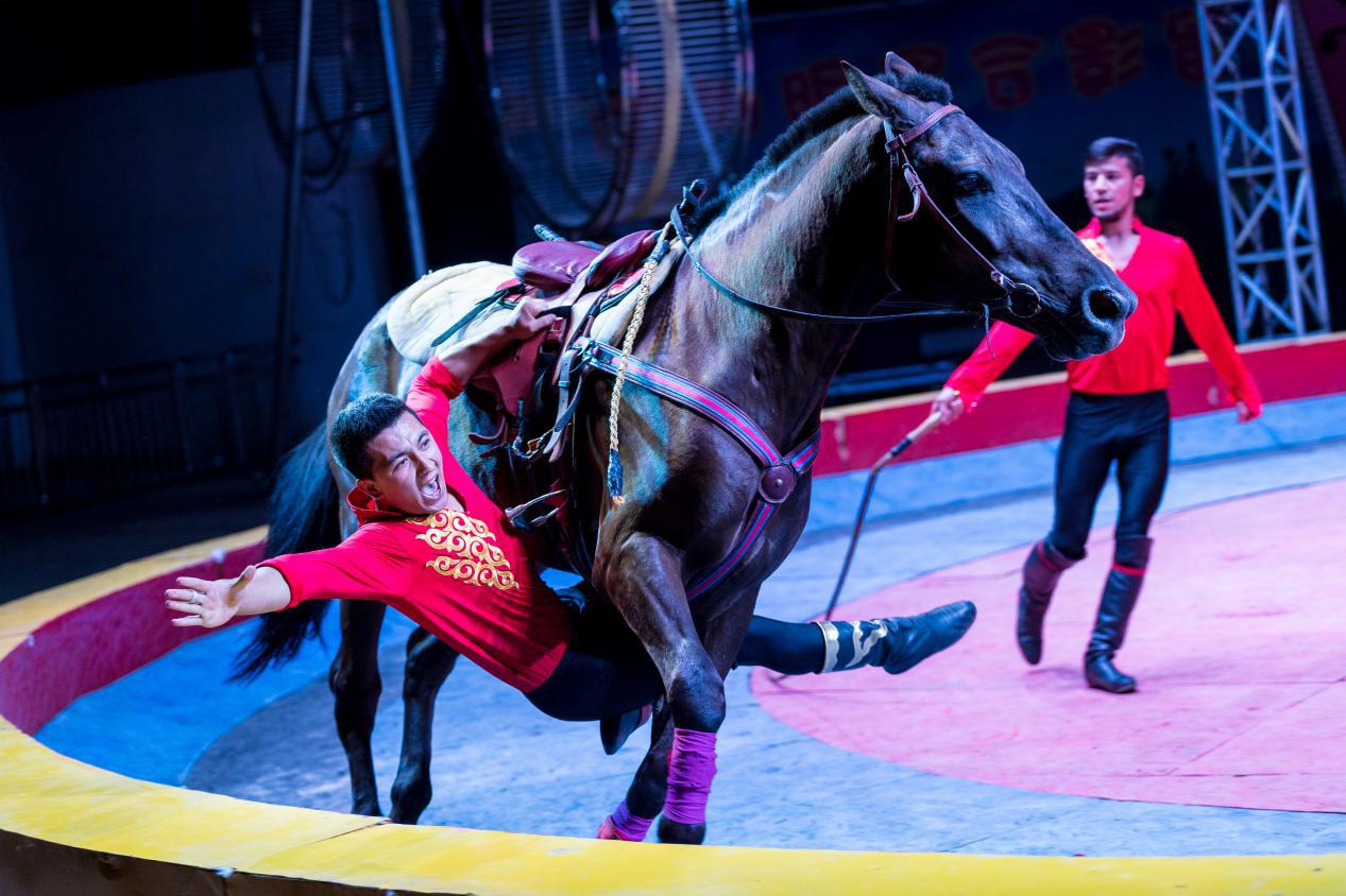 无锡动物园·太湖欢乐园欢乐大马戏套票