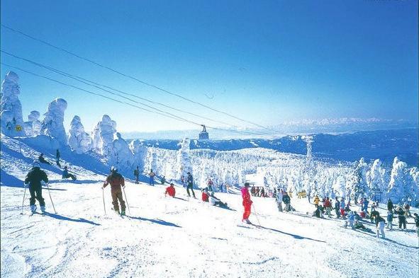 神农架国际滑雪巴士2日游赏冬日华中屋脊,激情畅滑网红雪场赠送保温杯意外险