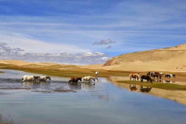 西藏拉萨、林芝、大峡谷、巴松错11日双卧跟团游[进藏首选]0自费、赠6大特色美食,1晚宿鲁朗国际小镇,深度体验藏地田园生活