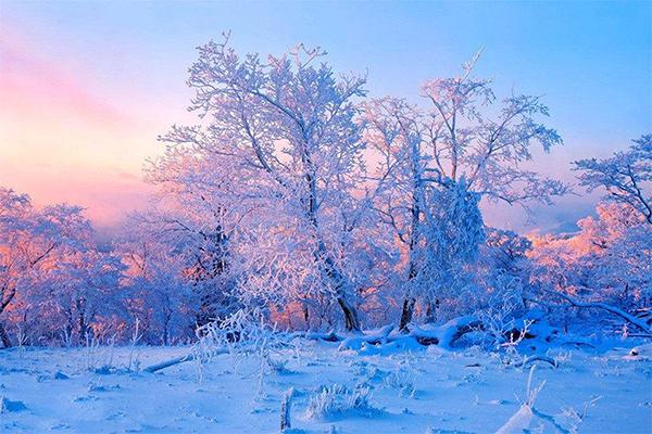 哈尔滨、亚布力滑雪、雪乡穿越、魔界、长白山、雾凇岛7日游升级成雪乡标炕、 0购物0自费、滑雪3小时、激情冬漂、镜泊湖冬捕、泡温泉、穿花袄、马拉爬犁、包饺子、二人转,浓浓东北味