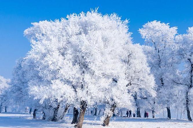 哈尔滨亚布力滑雪、雪乡长白山纯玩7日6晚当地游[超值预售]吉林雾凇岛,双次温泉,徒步新开发的净土风轮雪山穿越林海