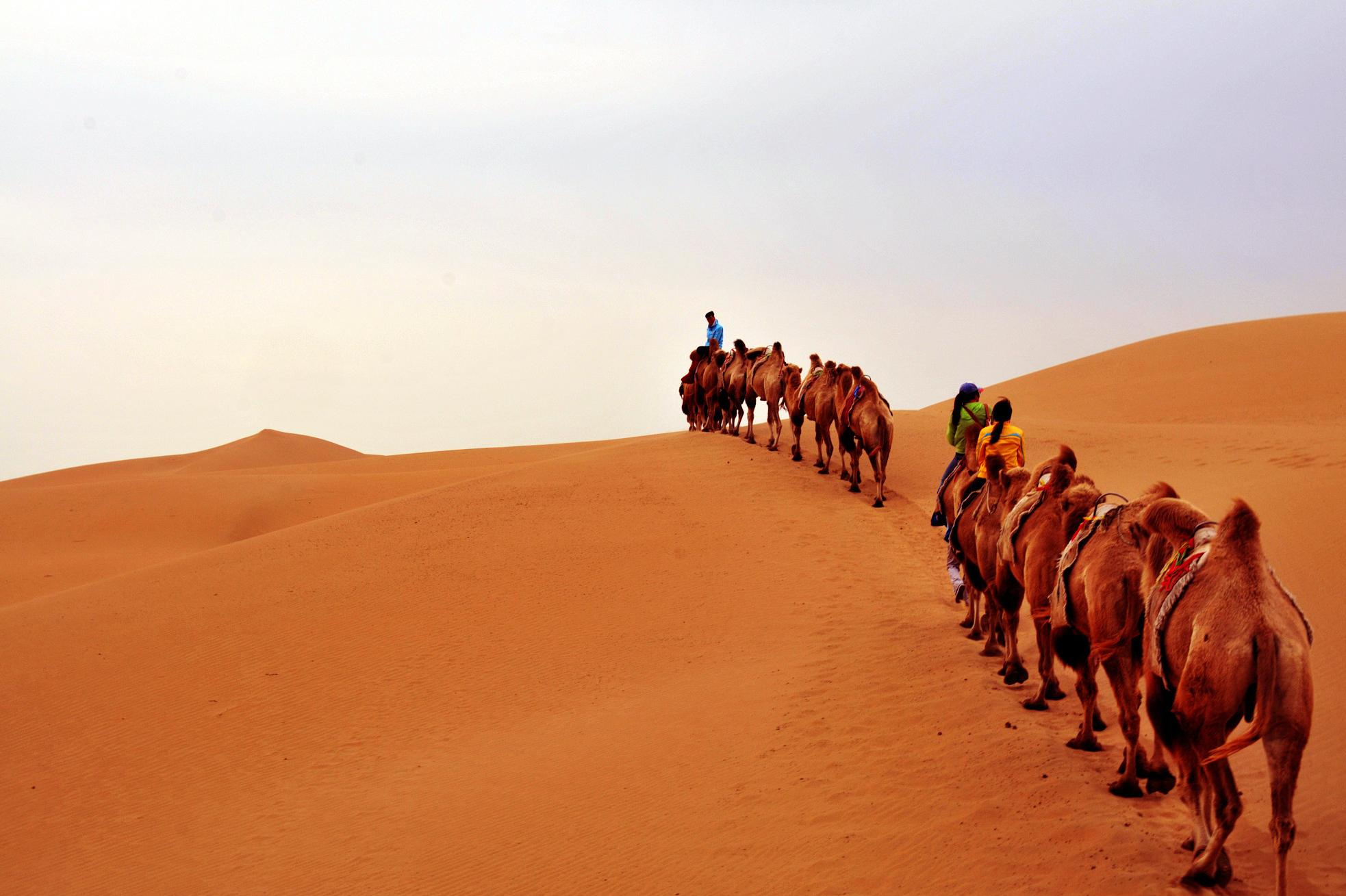 哈素海、希拉穆仁草原、响沙湾、康巴什5日飞机跟团游沙漠+草原+民俗+美食,赠送价值298元万家惠水上世界的门票