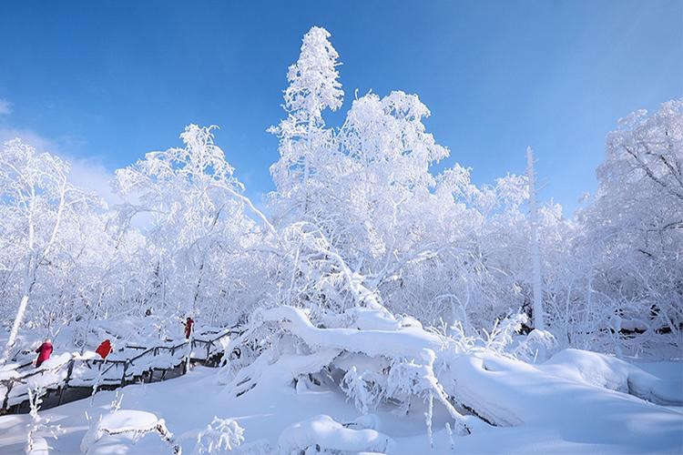 哈尔滨、雪乡、冬捕、雾淞、温泉滑雪高铁5日跟团游全新线路升级、全程汽车、保证品质、温泉SPA、赠送暖心大礼包,0购物,无强销