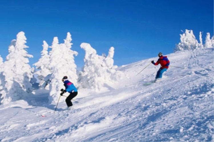 神农架国际滑雪、情人泉、昭君村、三峡大坝3日当地游游大坝 观雪景 含滑雪三件套 滑雪2小时 下单即送发热鞋垫、市内定点接送 全程0购物