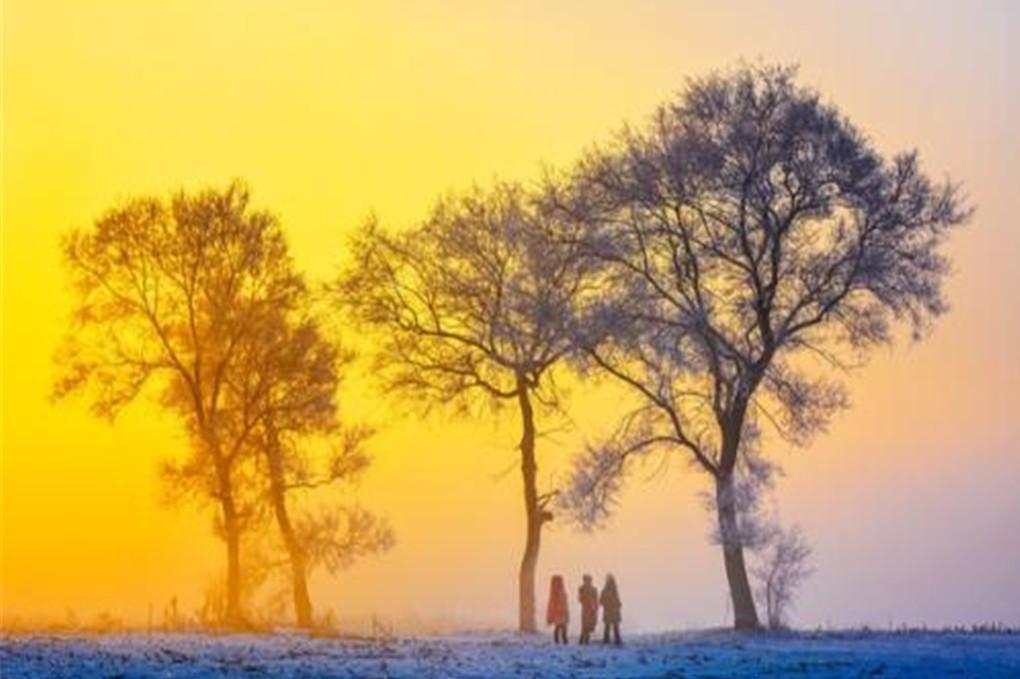 哈尔滨-亚布力--雪乡-镜泊湖--长白山-魔界-雾凇岛巴士7日6晚深度游24小时无忧接机接站