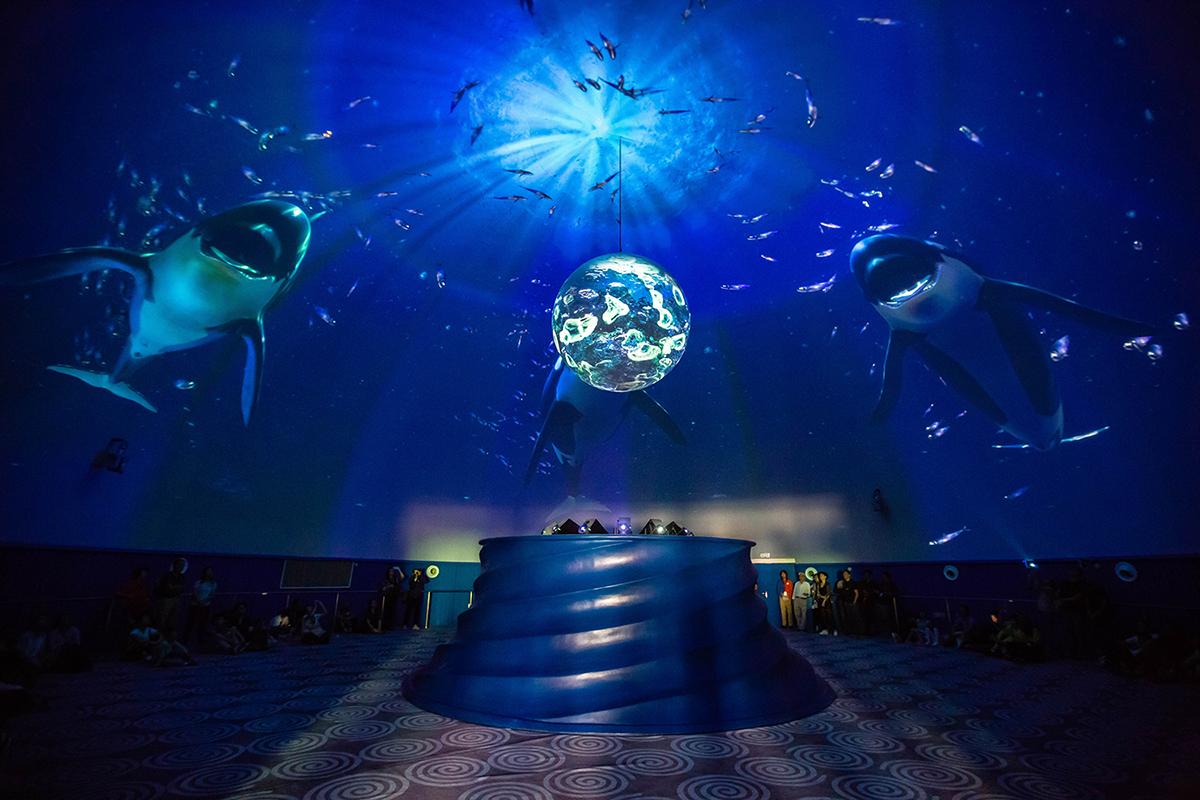 上海海昌海洋公园天幕影院