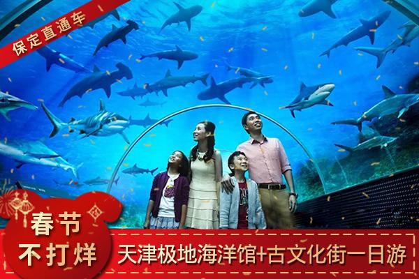 天津极地海洋馆、古文化街1日巴士跟团游节后错峰游