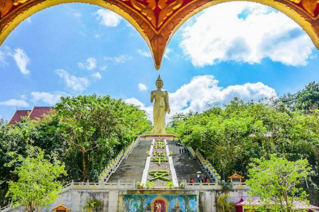 云南西双版纳 野象谷 基诺山寨 大佛寺3日游追寻热带雨林野象  祈福大佛寺 基诺山寨