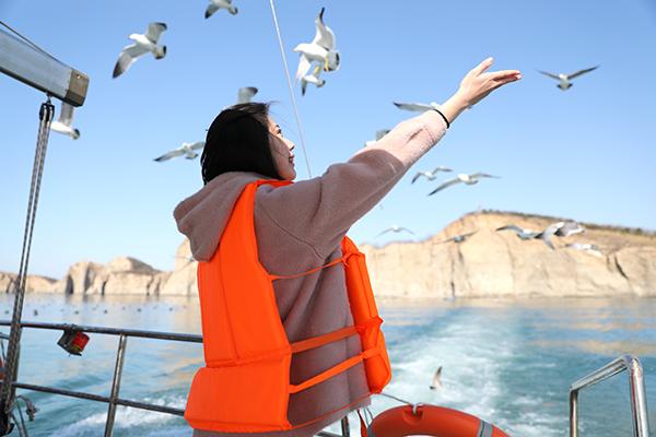 大连老虎滩海洋公园、旅顺巴士4日当地游品质酒店住宿,0自费0购物,深入海洋世界