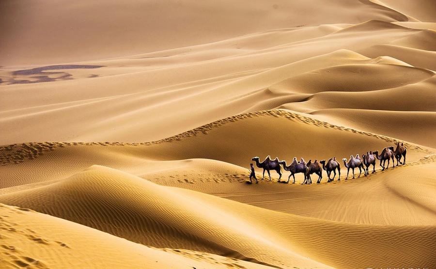 火洲吐鲁番、鄯善沙漠品质纯玩1日游