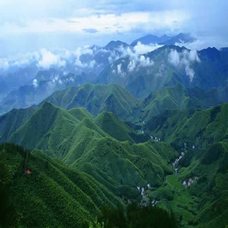 江南奇山莫干山1日跟团游
