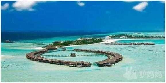 马尔代夫双鱼岛官网_马尔代夫双鱼岛让你回归大自然_双鱼岛旅游给