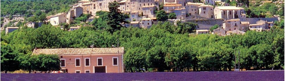 普罗旺斯景点大全:教皇之城阿维尼翁