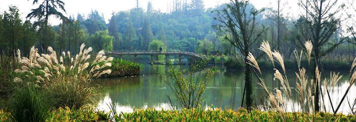 慈城古县城景点1