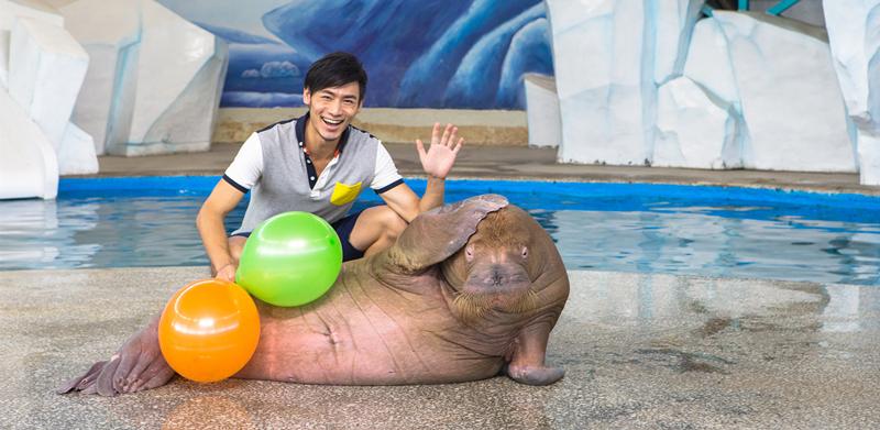 海洋动物展示区
