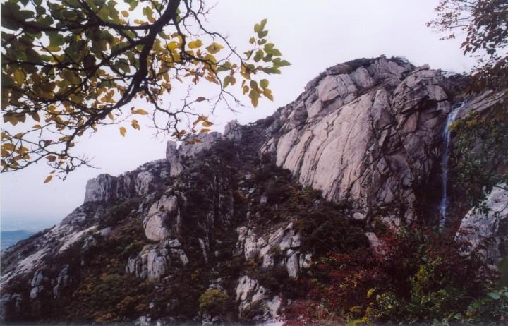 山东招远罗山国家森林公园图片