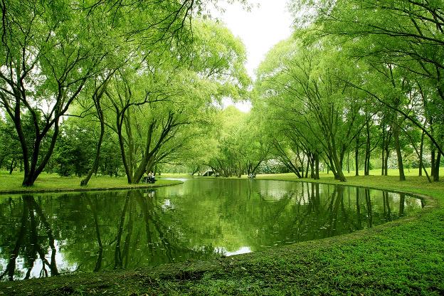 水乡佳景素材图片