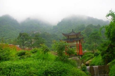 白鹤观竹海旅游度假区
